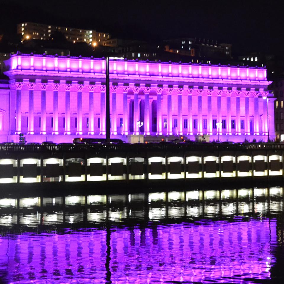In Lyon (France), Visotec celebrated Cluster Lumière's 10-year anniversary